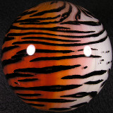 Chinese Tiger Size: 3.13 Price: SOLD