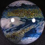 #5: New World Explorer Size: 2.61 Price: $450