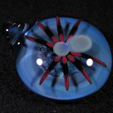 #5: Spidey  Size: 1.69  Price: $140