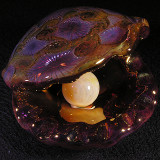 The Golden Oyster Size: 2.92 x 2.32 Pearl - 0.76 Price: SOLD