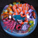 Cirque du Reef  Size: 1.47  Price: SOLD