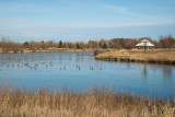 South Lake-1.jpg