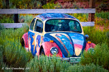 Artful VW in the Weeds