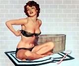 wash tub and brush II