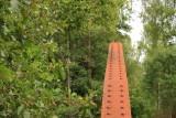 The rail bridge at Strömsfors