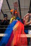 Regenbogenparade 2013_DSC0483.jpg