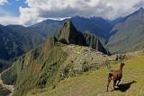 2016 PERU TRIP