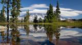 Mt Rainier 2013