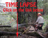 Time Lapse