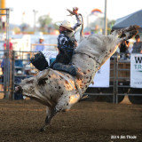 2014 Twin Cities Bulls and Barrels Challenge at the SWW Fair
