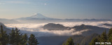 Mt Adams and Mt St Helens