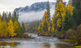 Fall Colors - American River
