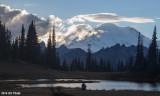 Mt Rainier / Upper Tipsoo Lake