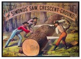 Simonds Crescent Ground