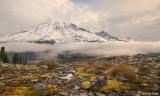 Mt Rainier from Pinnacle Glacier