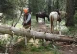 7A Trail Work