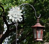 Lantern - IMG_1522.JPG