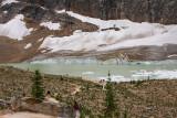 Banff - Jasper Glaciers