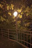 night_photo