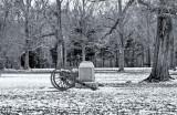 Shiloh Winter