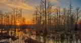 Sunset, Marsh