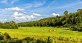 rural_scenes