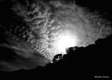 solar eclipse sausalito october2014 .jpg