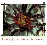 jeanne bday 2015.jpg
