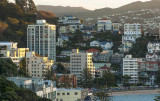 Oriental Bay late afternoon