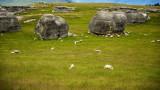 Elephant Rocks, Waitaki near Oamaru