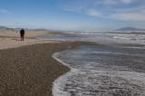 _DSC8300-1400.jpg - a walk on Otaki Beach