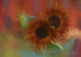 Sunflowers on Fire