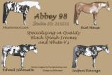 Abbey98-12-31-15-revision-2.jpg