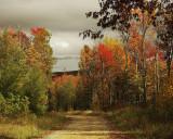 Fall in West Virginia