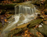 Small creek at Cove Springs park in Frankfort, KY