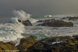 Oregon coast at Yachats, OR