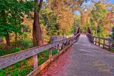 CUYAHOGA VALLEY NATIONAL PARK BRIDGE_0603-.jpg