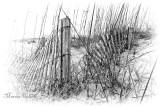 TYBEE BEACH FENCE_2081.jpg