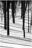 Snow graphics.