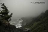 Coastal Fogg at Klamath