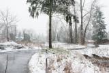 meadowbrook_pond_-_winter