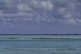 Turks and Caicos 2014