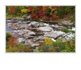 Fall Colours - Stream