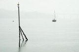 1568. Gray day on the Tay