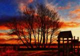 1032. Sunset