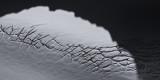 Shadow & Crevasses, Upright Peak's Northeast Glacier (Upright_101713_028-10.jpg)