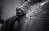 Horse Armor Detail(NYC_081814-292-1.jpg)