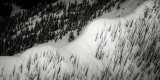Fire To A Ridge, West Of Powder Mountain(PowderMountainFire_032616_012-4.jpg)
