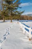 Oak Ridge Park, NJ In The Snow 85849