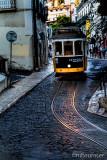 Lisbon 96168
